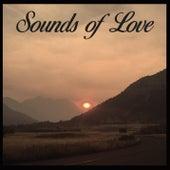 Sounds of Love von Cellar Door