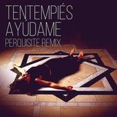 Ayúdame (Perquisite Remix) by TenTemPiés