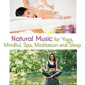 Natural Music for Yoga, Mindful, Spa, Meditation and Sleep de Various Artists