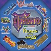 Reunión Entre Amigos by Various Artists