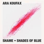 Shame - Shades of Blue by Ara Koufax