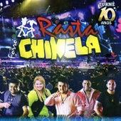 Forró Rasta Chinela (Turnê 10 Anos) by Rasta Chinela