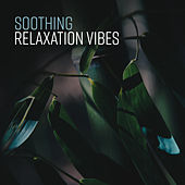 Soothing Relaxation Vibes von Soothing Sounds