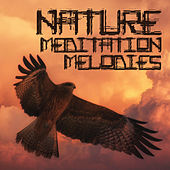 Nature Meditation Melodies by Sounds Of Nature