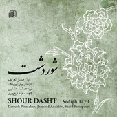 Shour Dasht by Various Artists