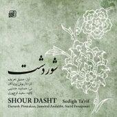 Shour Dasht de Various Artists