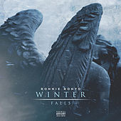 Winter Falls by RonnieRonyo