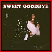Sweet Goodbye de Left Boy