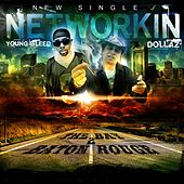 Networkin' (feat. Young Bleed) by Dollaz (Hip-Hop)