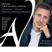 Œuvres pour la main gauche - Anthologie, Vol. 7 by Maxime Zecchini
