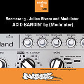 Acid Bangin' de Various Artists