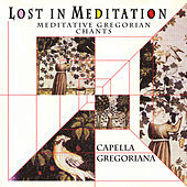 Lost In Meditation - Meditative Gregorian Chants by Various Artists