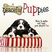 Peaceful Puppies by Various Artists