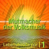 Die Mutmacher der Volksmusik Vol. 1 de Various Artists