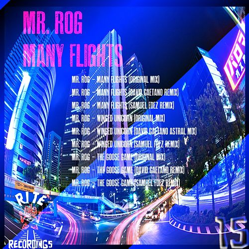 Many Flights - EP by Mr.Rog