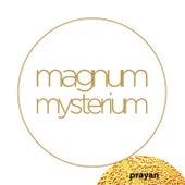 Magnum Mysterium by Prayan