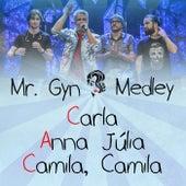 Medley: Carla / Anna Júlia / Camila, Camila (Ao Vivo) von Mr. Gyn