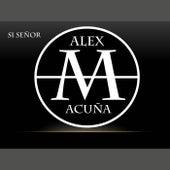 Sí Señor de Alex Acuña (1)