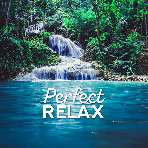 Perfect Relax by Relax - Meditate - Sleep