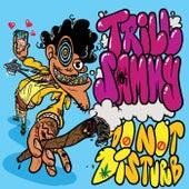 Do Not Disturb by Trill Sammy