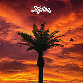 Malibu by Vegas Jones