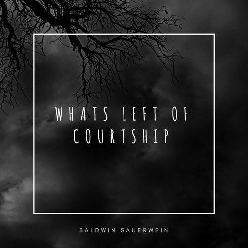Whats Left of Courtship by Baldwin Sauerwein