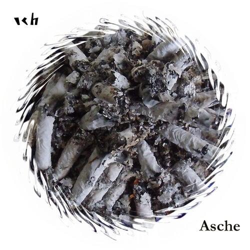 Asche by Das Ich