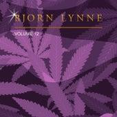 Bjorn Lynne, Vol. 12 by Bjorn Lynne