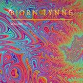 Bjorn Lynne, Vol. 13 by Bjorn Lynne