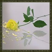 Fragmentos by Florentino
