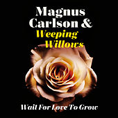 Wait for Love to Grow by Magnus Carlson