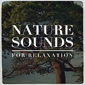 Nature Sounds for Relaxation by Echoes of Nature