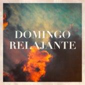 Domingo Relajante von Various Artists