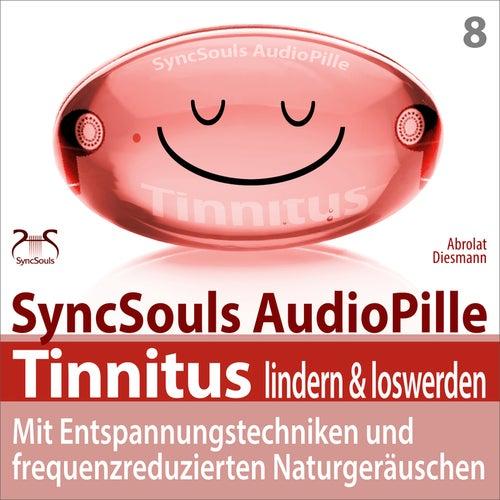 Tinnitus lindern & loswerden: Mit Entspannungstechniken und frequenzreduzierten Naturgeräuschen von Torsten Abrolat