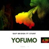 Yo Fumo, Vol. 1 by Gapbridga