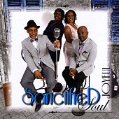 Sanctified Soul de Joyful