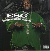Everyday Street Gangsta de E.S.G.
