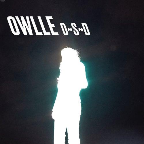 D~S~D by Owlle
