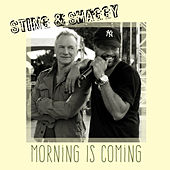 Morning Is Coming by Sting & Shaggy