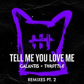 Tell Me You Love Me Remixes (pt.2) von Throttle