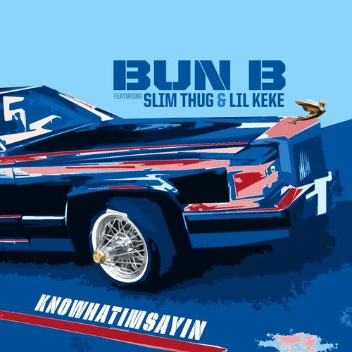 Knowhatimsayin (feat. Slim Thug & Lil KeKe) by Bun B