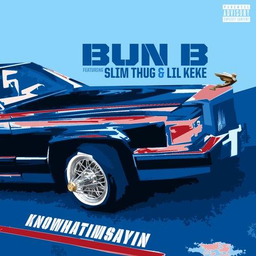Knowhatimsayin by Bun B