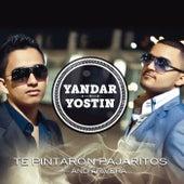 Te Pintaron Pajaritos (Radio Edit) de Yandar