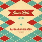 Jam Lab #10 - Rainha da Folhagem by Curumin