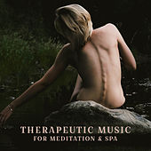 Therapeutic Music for Mediation & Spa de Massage Tribe