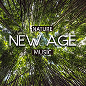 Nature New Age Music by Sounds Of Nature