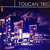 Toucan Trio by Toucan Trio