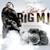The Best of Big Mj de Various Artists