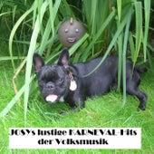 Josys lustige KARNEVAL-Hits der Volksmusik by Various Artists