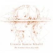 Du kommer klara dig ändå von Linnea Samia Khalil